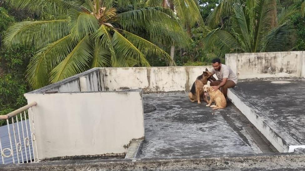 Rathiš se bori protiv dosade uz svoje ljubimce
