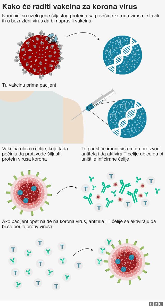 vakcina protiv korona virusa