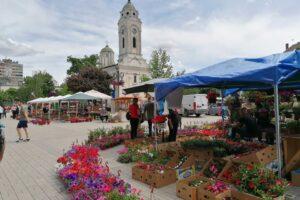 sajam cveća Smederevo